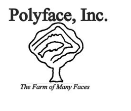 Polyface.png