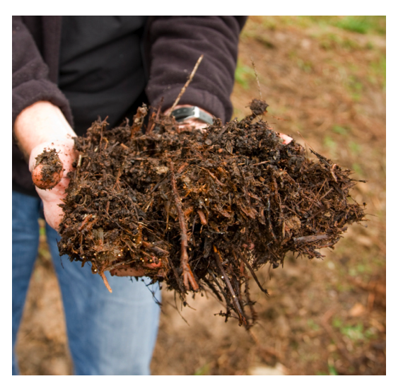 compost.png