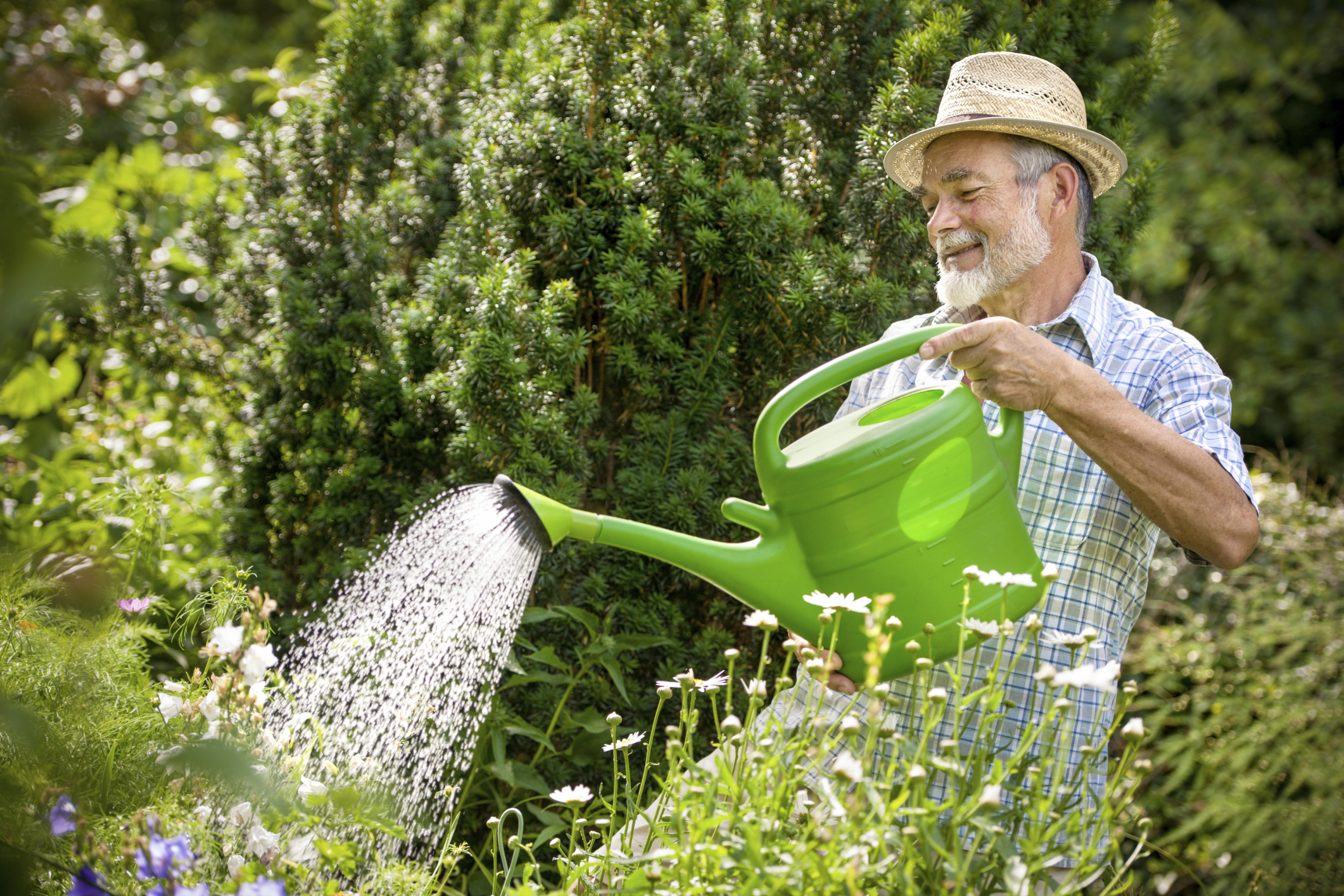 watering can old man.jpg
