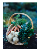 basket veggies 2.png