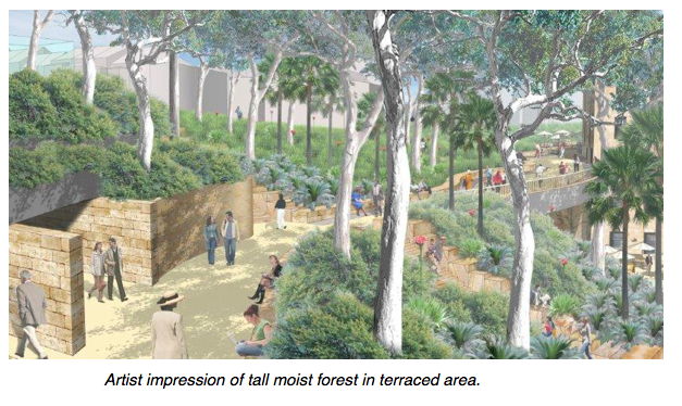 Barangaroo forest.png
